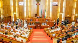 Senate Takes Action On the Death Of Corper Killed By Policeman