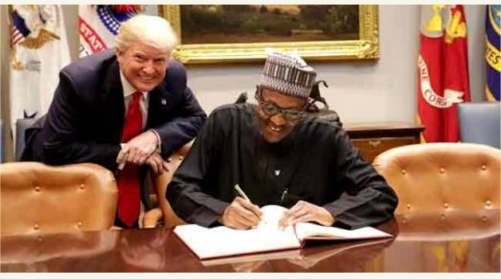 US President Donald Trump Blasts Buhari