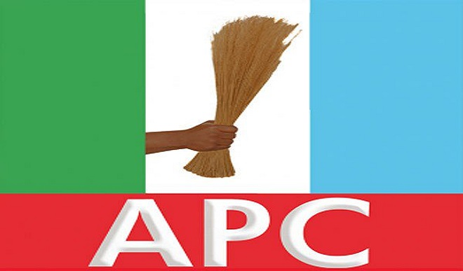 Breaking : APC missing as 67 vie for Imo governorship