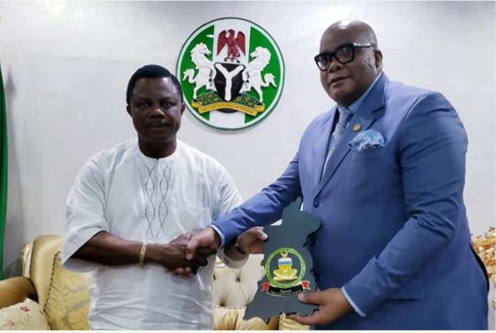 South Africa To Open Visa Office In Anambra