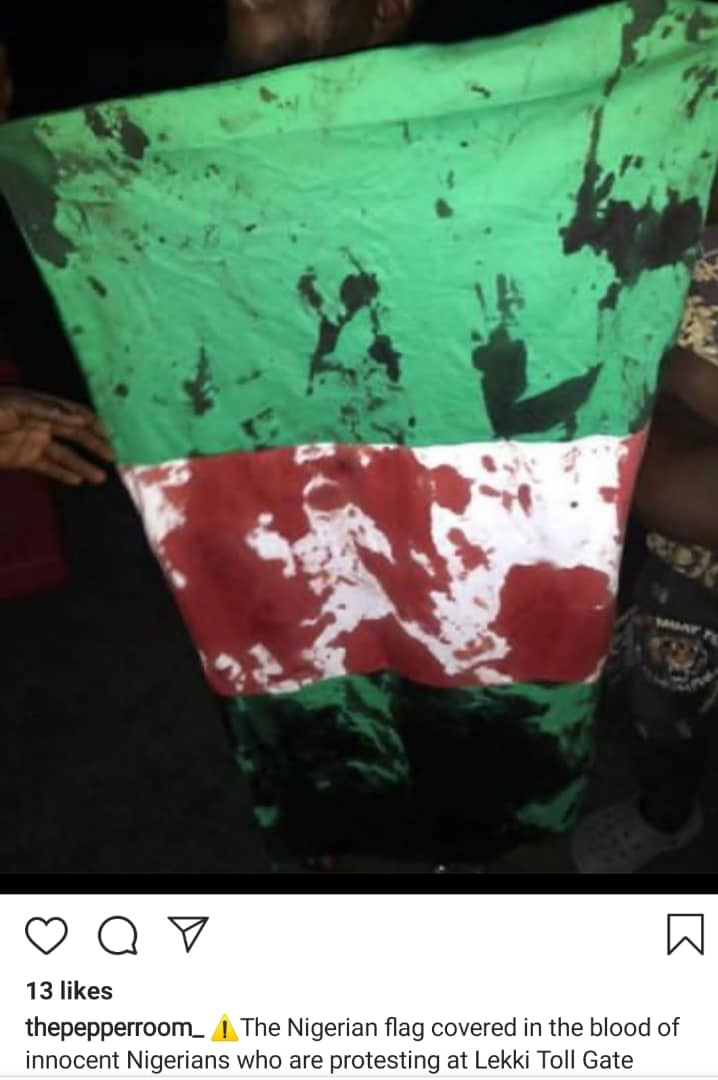 #Genocide :  White in Nigeria Flag turns Red as  soldiers kill citizens (video)
