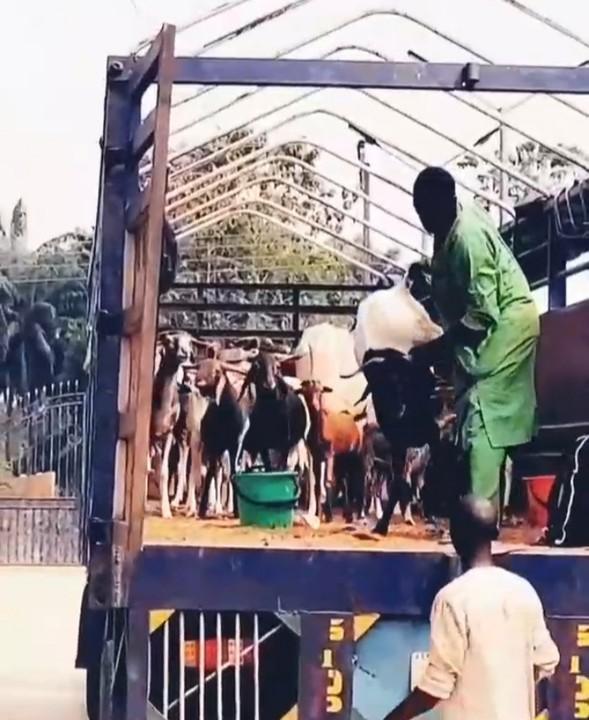 E-money shuts down village for 31st night celebration (video)