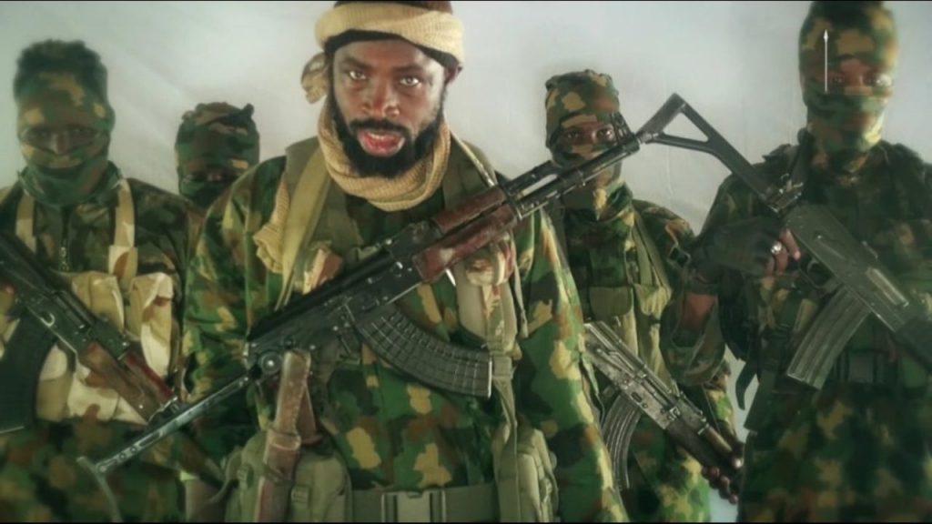 Boko Haram leader, Shekau reveals number of farmers killed in Borno farm