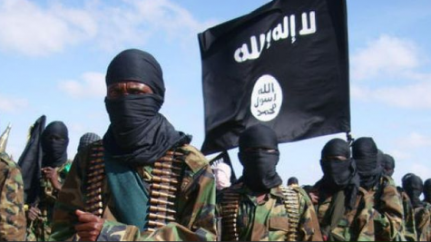 Ansaru Terrorists Kill 30 Bandits In Kaduna